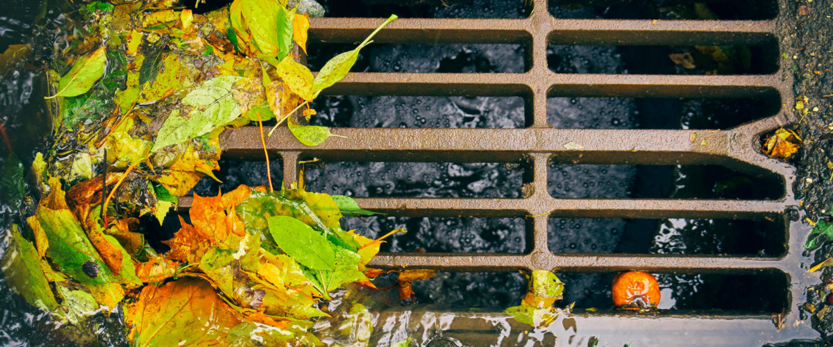 How to clear an outside blocked drain
